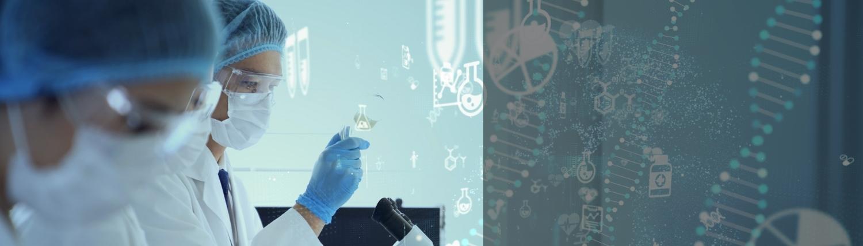 organoid research
